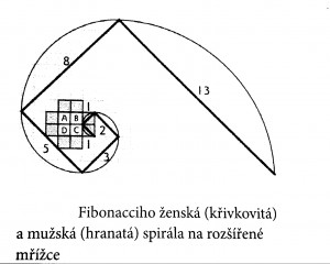 fibonacciho muzksa a zenska spirala